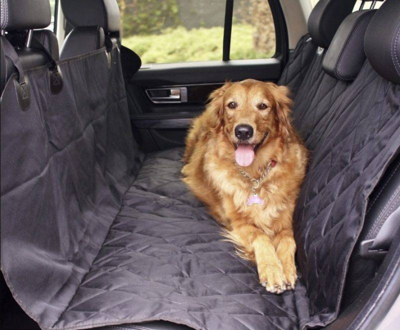 Dog Car Seat Cover Dog in a Car Auto