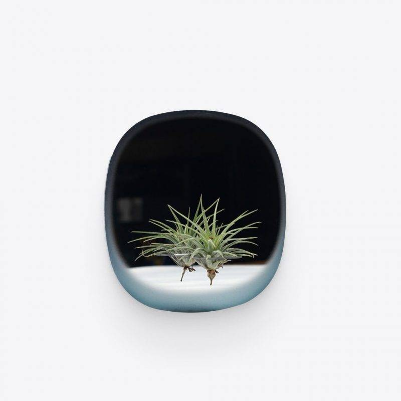 Square Blue Plant Mirror Home & Garden Home Goods
